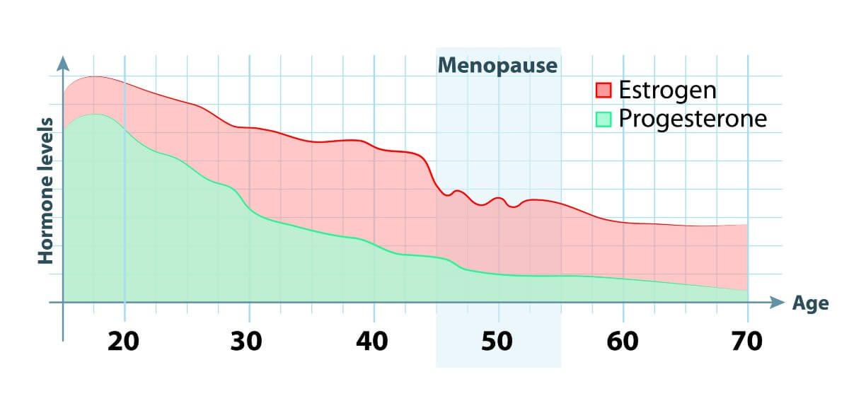Progesteron-Spiegel
