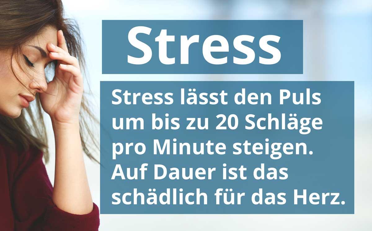 Stress lässt den Puls deutlich steigen