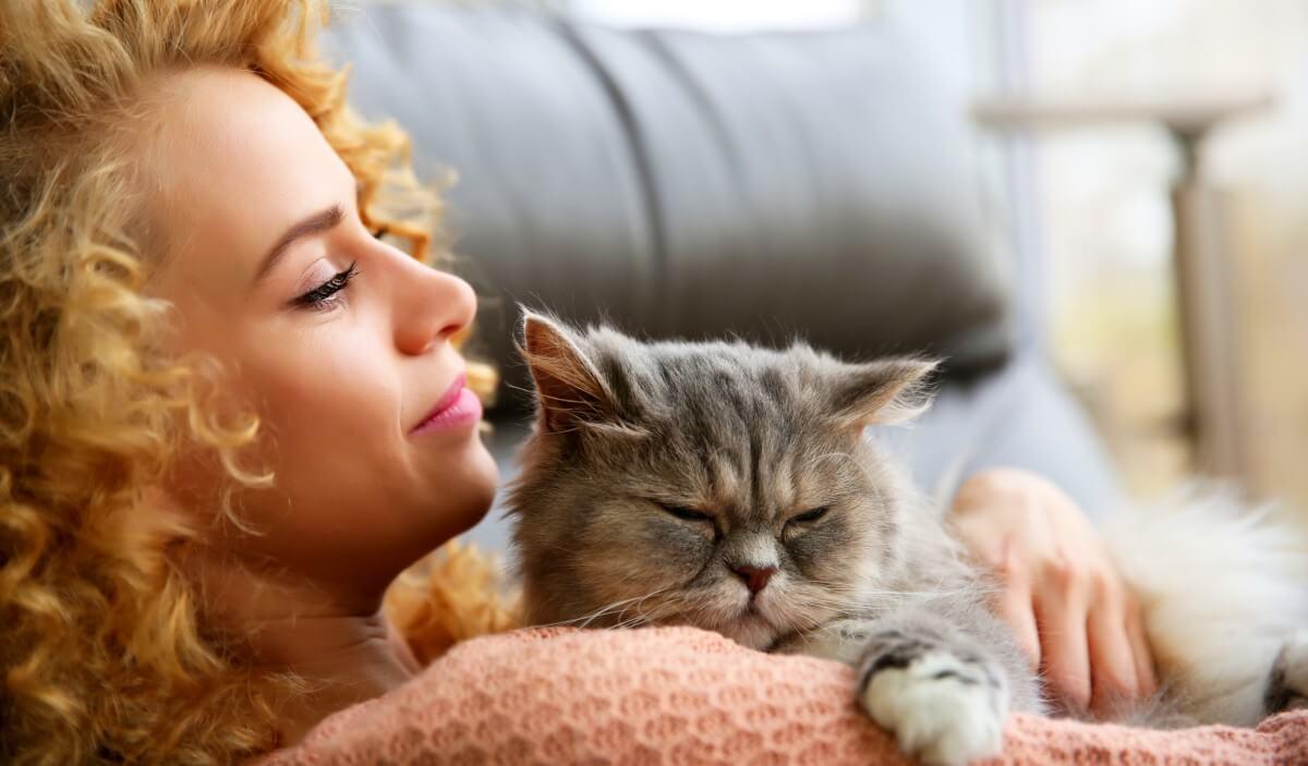 Katze senkt Herzinfarktrisiko